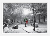 City Park in the Snow Holiday Cards